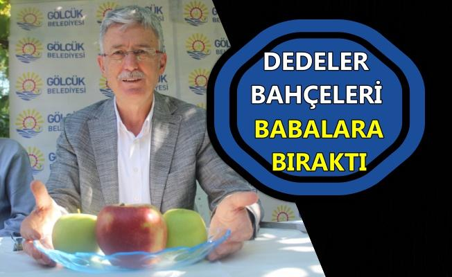 """Gölcük """"İhsaniye Yeşil Elma Festivali""""ne hazır"""